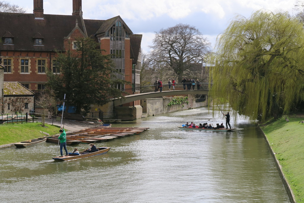 26.backs Cambridge